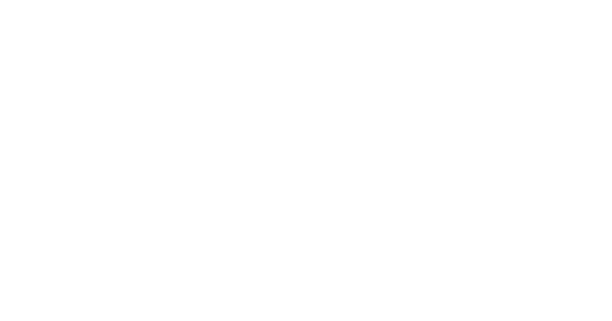 FlexHR transparent logo