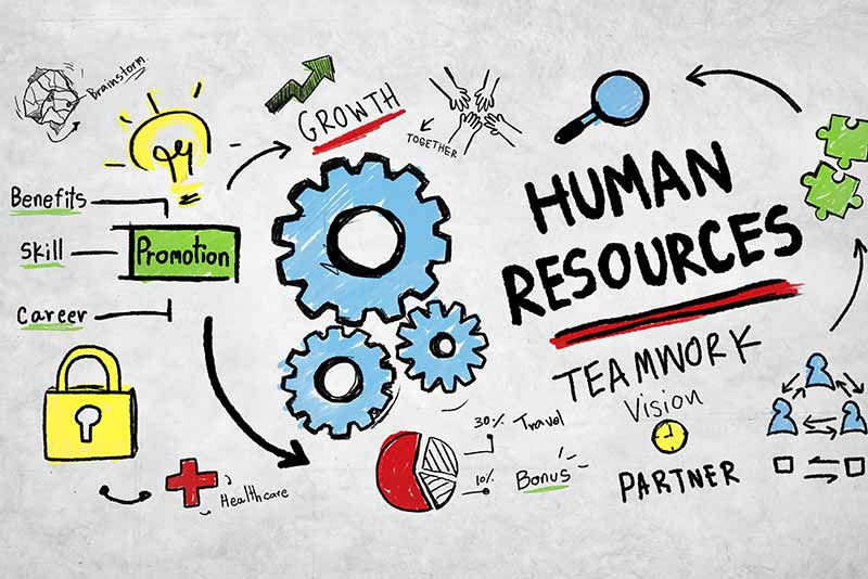 The Top 5 Most Demanding HR Functions Illustration Graphic