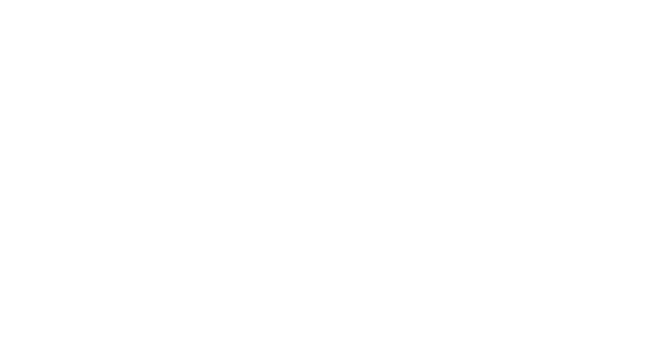 Flex HR consulting and outsourcing footer logo